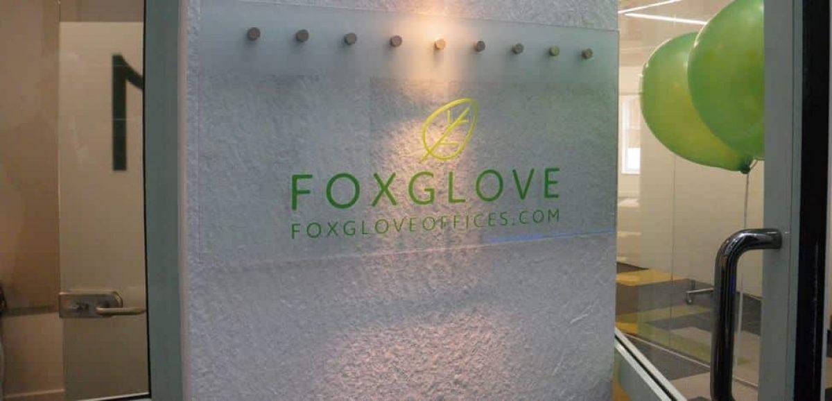 Foxglove-03